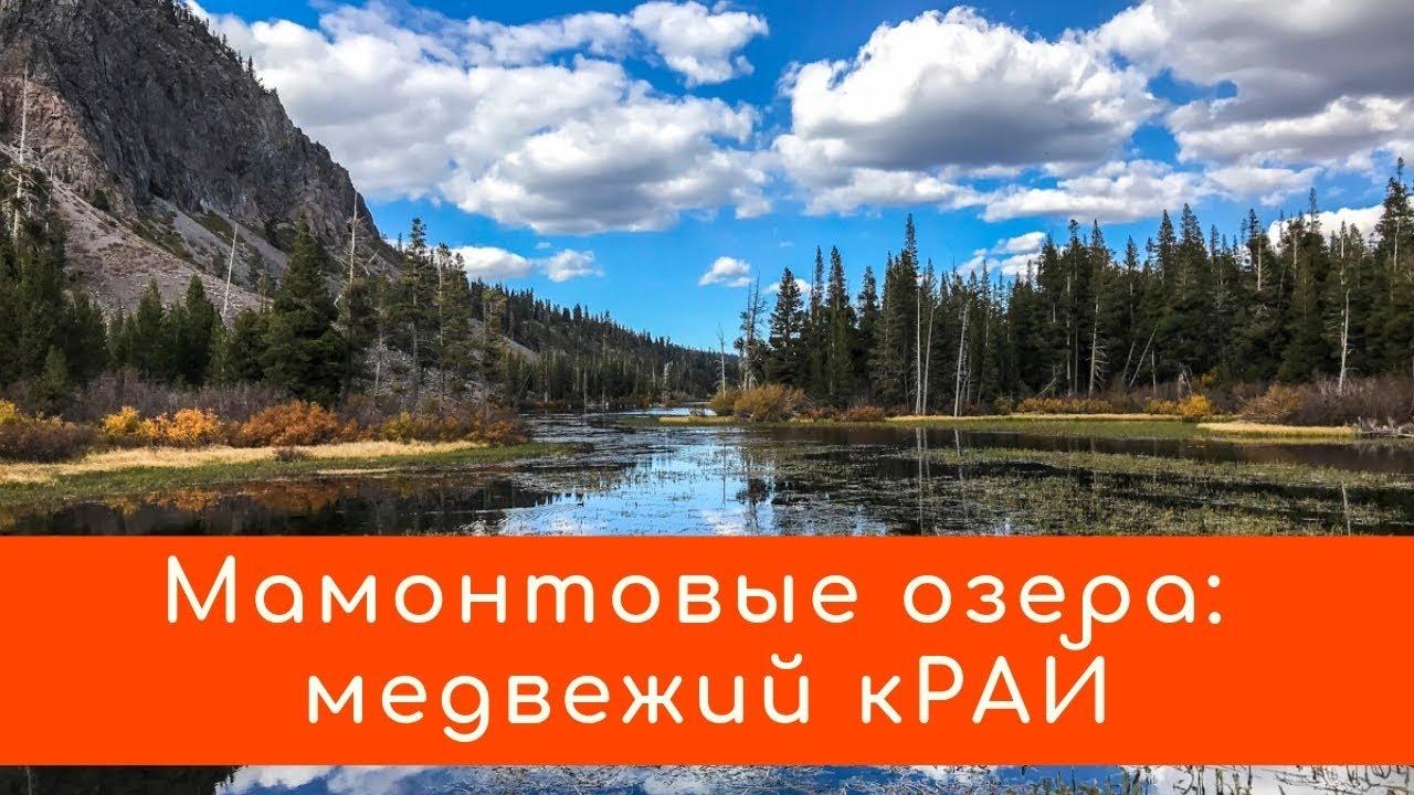 Mammoth Lakes: райские озера, разломы после землетрясений, медведи